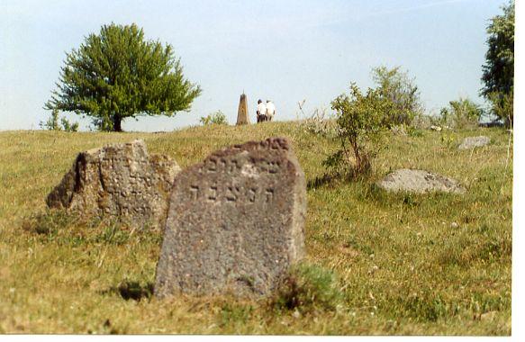 Jewish cemetery, Volpa, Belarus
